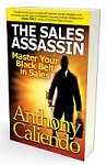 best selling business book The Sales Assassin