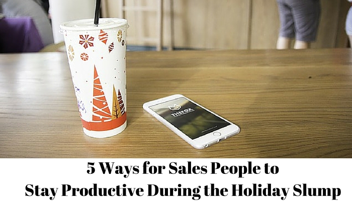 During the holidays, many sales people struggle to stay productive.  Business and generating income can't just stop for the holidays, and salespeople (especially those on commission) need to keep productive in downtimes during the holiday season.